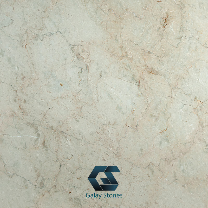 Olive Chehrak Marble